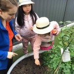 Learning to Care for the Environment on National Tree Day